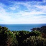 Una de las vistas desde el hostal Sa Barraca. Sencillamente sensacional.