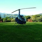 Helicopter landing in the garden