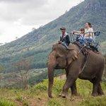 Путешествие на слоне