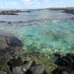 Wai'Opae Tide Pools, just south of Kapoho Bay