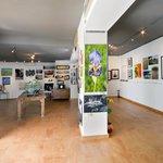 Art & Image Studio