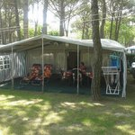 Photo de Camping Al Boschetto