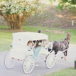 Our horse and buggy.