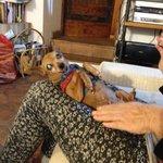 Valentina's mom and her diva doggie