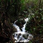 Parco Forestale di Poggio Neri
