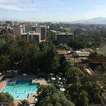 Hotel Pool area.