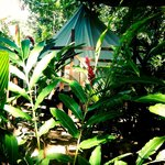 Tent Lodge