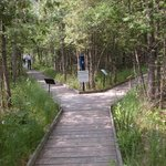 Purdon Conservation Area