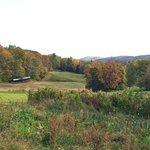 Photo de Twin Farms