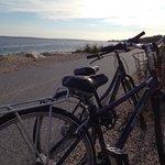 Shining sea bike trail