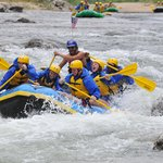 Full day raft trip through Browns Canyon