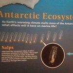 Sea ice exhibit sign