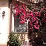 Kleine hotel in villetta giardino!!!