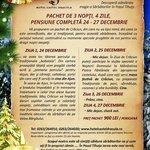 Christmas at Hotel Castel Dracula