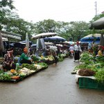 Son La market