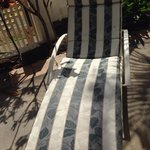 Clean chairs at the pool ��