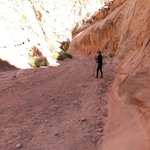 Walking along the wash - Capitol Gorge Trail