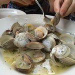 The clams