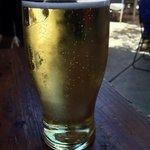Local Brewed Little Creatures Cider