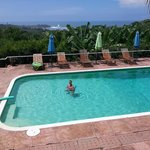 View of pool and Pacific Ocean.
