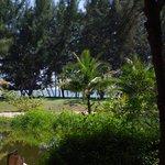le vue de notre bungalow