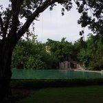 la piscine d'eau salée