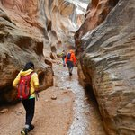 Unlike slots like Little Wild Horse Canyon near Capital Reef NP, Willis Creek is wide.