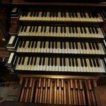 Zwolle  tastiera