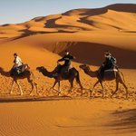 Sijilmassa Tours - Day Tours