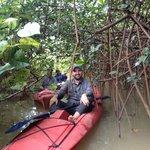 Kayaking in the mangroves!