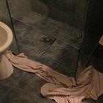 leaking shower, room 102