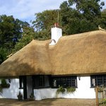 Re-thatched beauty
