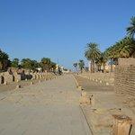Avenida das Esfinges, Luxor