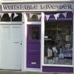 Whitstable Lavender