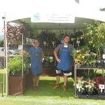 aloha botanicals, maui.....great plants
