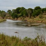 View of the KNP from the River House deck