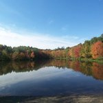 PEEC's Front Pond - Autumn