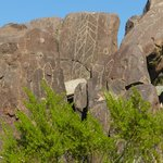 Typical view of petroglyphs