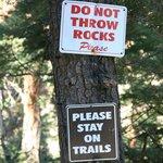 Do not throw rocks...