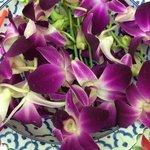 Orchideendekoration im DAO