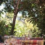 Terrasse / garden