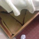 Bed broke as we sat down.