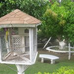 One of many tropical bird cages