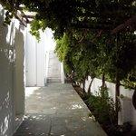 Photo of Rodia Studios