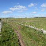 Les prés bordés de murets de pierres et de clôtures en bois