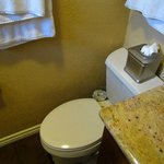 The confined toilet in the Garden Room