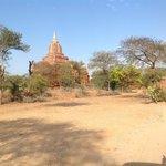 Enjoy Bagan Day Tour
