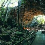 Undara Lava Tubes - Undara Experience