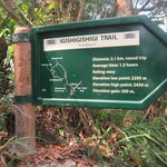this is the trail that you have to follow to get to  cannopy