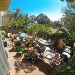 Free barbecue at sunday, backyard